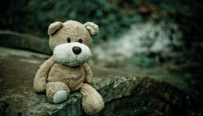 Plan & Aide du blog Ride Your Life : un ourson en peluche tout mimi perdu dans la forêt