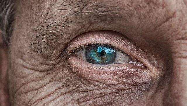 Découverte : un œil fascinant qui illustre la découverte